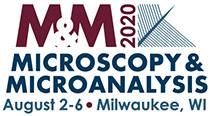 Microscopy & Microanalysis 2020